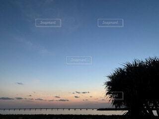 海,空,木,屋外,ビーチ,雲,夕暮れ,沖縄,影,水平線,樹木,月