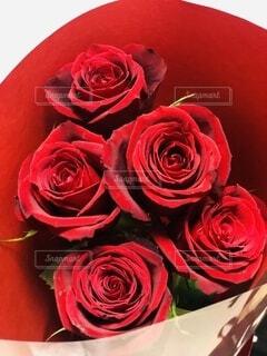 薔薇の花束の写真・画像素材[4174155]