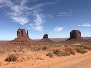 砂漠は未舗装道路の脇にあるの写真・画像素材[4771972]