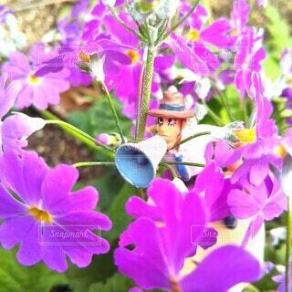 春を告げるの写真・画像素材[4232475]