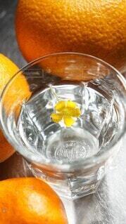 オレンジと水と花の写真・画像素材[4301784]