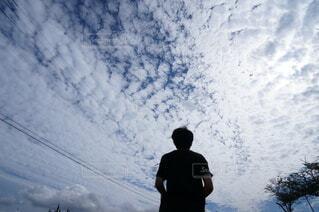 空を見上げる少年の写真・画像素材[4592757]