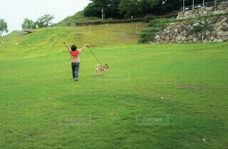 芝生の公園を散歩している女性の写真・画像素材[4627886]