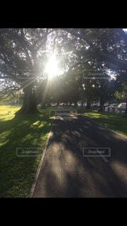 オーストラリアの写真・画像素材[4178082]