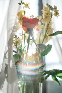 窓際の花瓶の写真・画像素材[4185675]