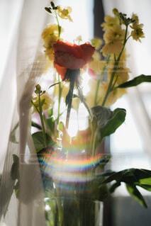窓際の花束の写真・画像素材[4185679]