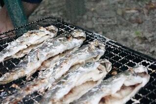 食べ物,魚,貝,魚介類,オイスター,魚製品