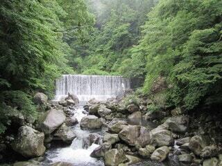 自然,屋外,川,水面,山,滝,樹木,岩,渓谷,谷,草木