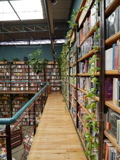 メキシコシティのインスタ映えスポット 図書館 + カフェ = カフェブレリアの写真・画像素材[4193512]
