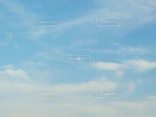 自然,風景,空,青空,月,昼,昼の月,白い月