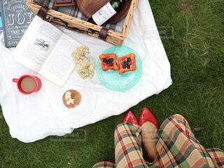 芝生の上で洋書片手にピクニックの写真・画像素材[4199221]
