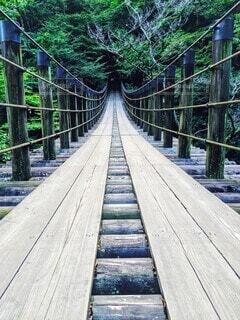真っ直ぐな木造橋の写真・画像素材[4203176]