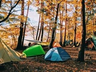 紅葉の中のテントの写真・画像素材[4204577]