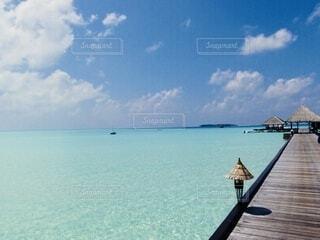桟橋からのぞむ遠浅の海の写真・画像素材[4202345]
