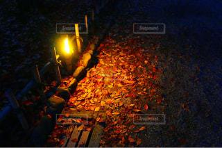 夜の写真・画像素材[244559]