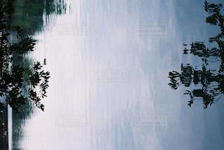 自然の写真・画像素材[235058]
