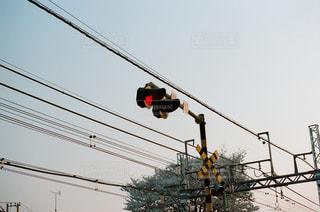 ワイヤーから掛かるトラフィック ライトの写真・画像素材[1205541]