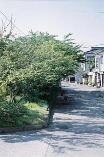 道の端にフォーカスを持つストリート シーンの写真・画像素材[1230134]