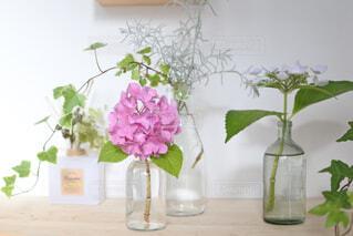 飾り台に瓶に生けた紫陽花たちが並ぶの写真・画像素材[4556996]