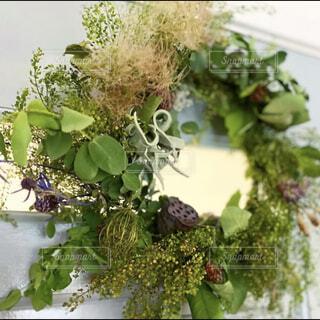 ブルーグレーのトイレに手作りのワイルドナチュラルなドアリースを飾る。の写真・画像素材[4409757]