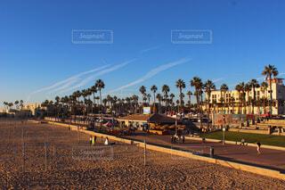 空,屋外,ビーチ,雲,樹木,ヤシの木,カリフォルニア