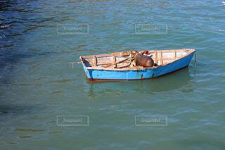風景,屋外,湖,ボート,船,水面,車両,水上バイク