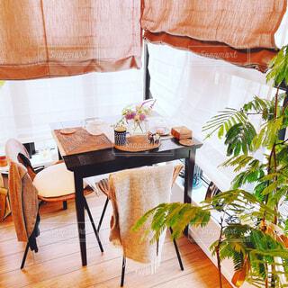 カフェ,花,屋内,花瓶,窓,椅子,テーブル,植木鉢,リラックス,家具,観葉植物,おうちカフェ,ドリンク,ダイニングテーブル,おうち,ライフスタイル,草木,リラックスタイム,おうち時間,コーヒー テーブル,ステイホーム