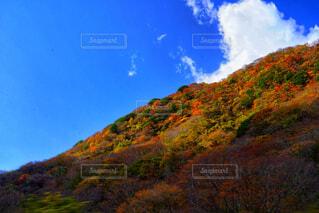 風景,空,秋,屋外,雲,山
