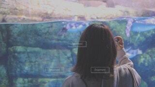 風景,青,水,室内,水族館,水色,ペンギン,女の子,少女,人物,人,絵画,水槽,テキスト,パーソン