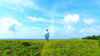 緑豊かな畑に立っている人の写真・画像素材[4213376]