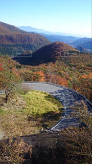 自然,風景,空,秋,屋外,山,樹木,高原