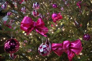 花,ピンク,紫,リボン,キラキラ,クリスマス,ツリー,草木,きらきら,りぼん,クリスマス ツリー