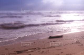 夕日の砂浜の写真・画像素材[4247726]
