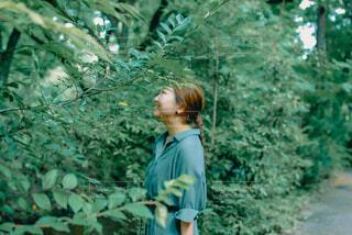 新緑の中佇む女性2の写真・画像素材[4450536]