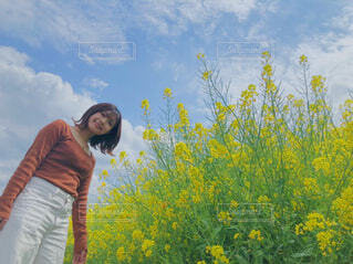 菜の花の前に私の写真・画像素材[4306761]