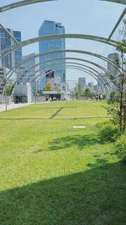 建物,屋外,緑,草,樹木,草木