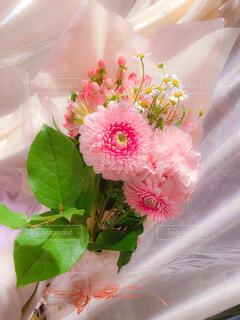 花束の写真・画像素材[4391124]