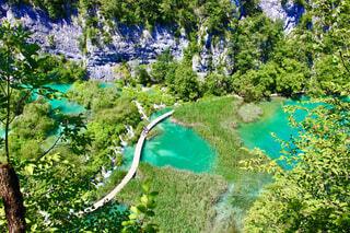 エメラルドグリーンが美しいクロアチアのプリトヴィッツェ湖群国立公園の写真・画像素材[4243489]