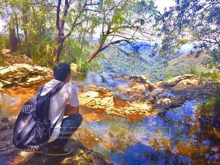 オーストラリアのゴールドコースト内陸の秘境の山からの景色の写真・画像素材[4243610]
