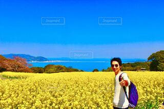 福岡県の能古島の写真・画像素材[4293195]
