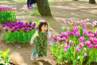 ひたちなか海浜公園のチューリップを前にはしゃぐ子供の写真・画像素材[4369845]