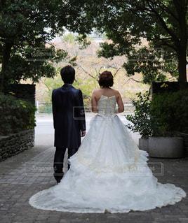 後ろ姿,結婚式,後姿