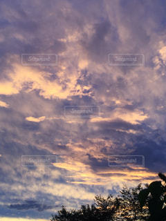 自然の写真・画像素材[231774]