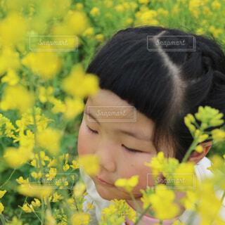菜の花に囲まれての写真・画像素材[4295833]