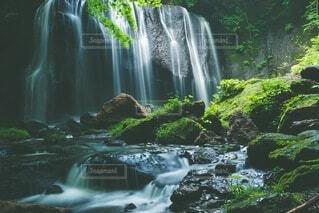 滝の写真・画像素材[4692392]