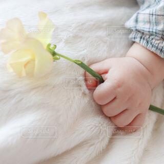 黄色いお花を持つ赤ちゃんの手の写真・画像素材[4310035]