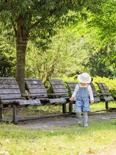 緑か豊かな公園のベンチの近くにいる子供の写真・画像素材[4409522]