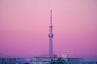 ピンクな景色に囲まれての写真・画像素材[4241926]