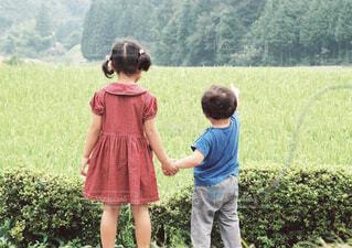 男の子がお散歩で見つけたものの写真・画像素材[4253830]