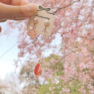 ハンドメイドの桜イヤリングの写真・画像素材[4283033]